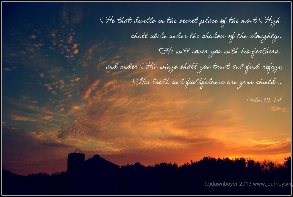Dwelling in His shadow Psalm 91