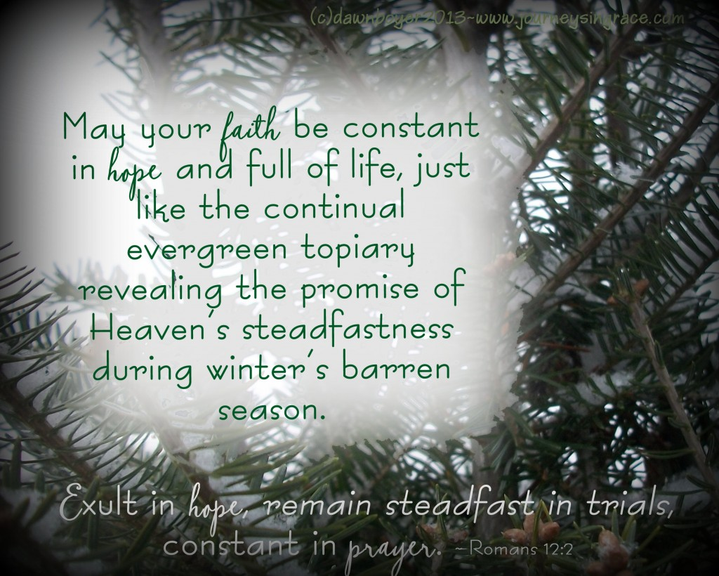 Steadfast Hope and Constant Prayer