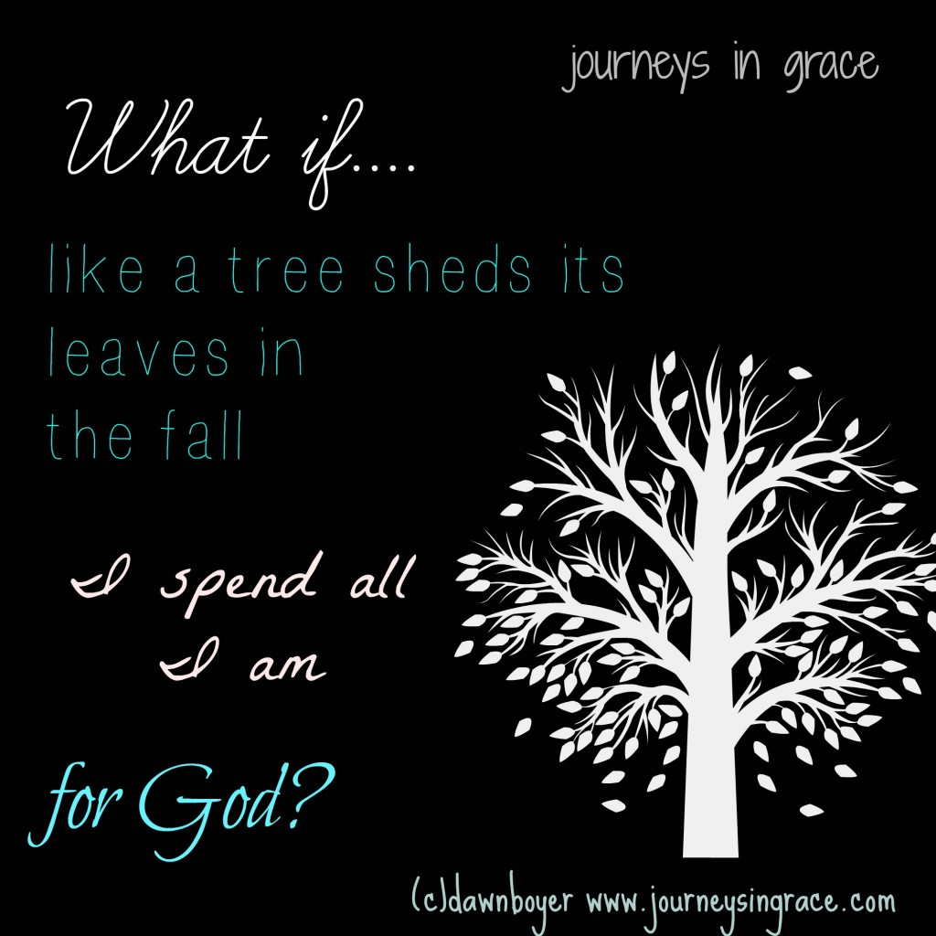 what if I spend all I am for God