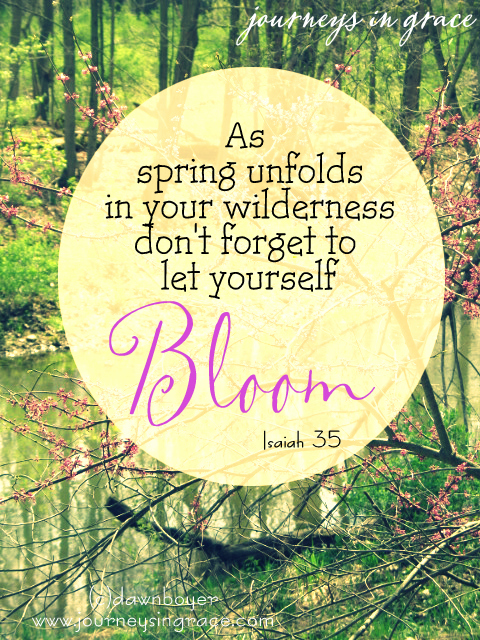 bloom in your spring season Isaiah 35