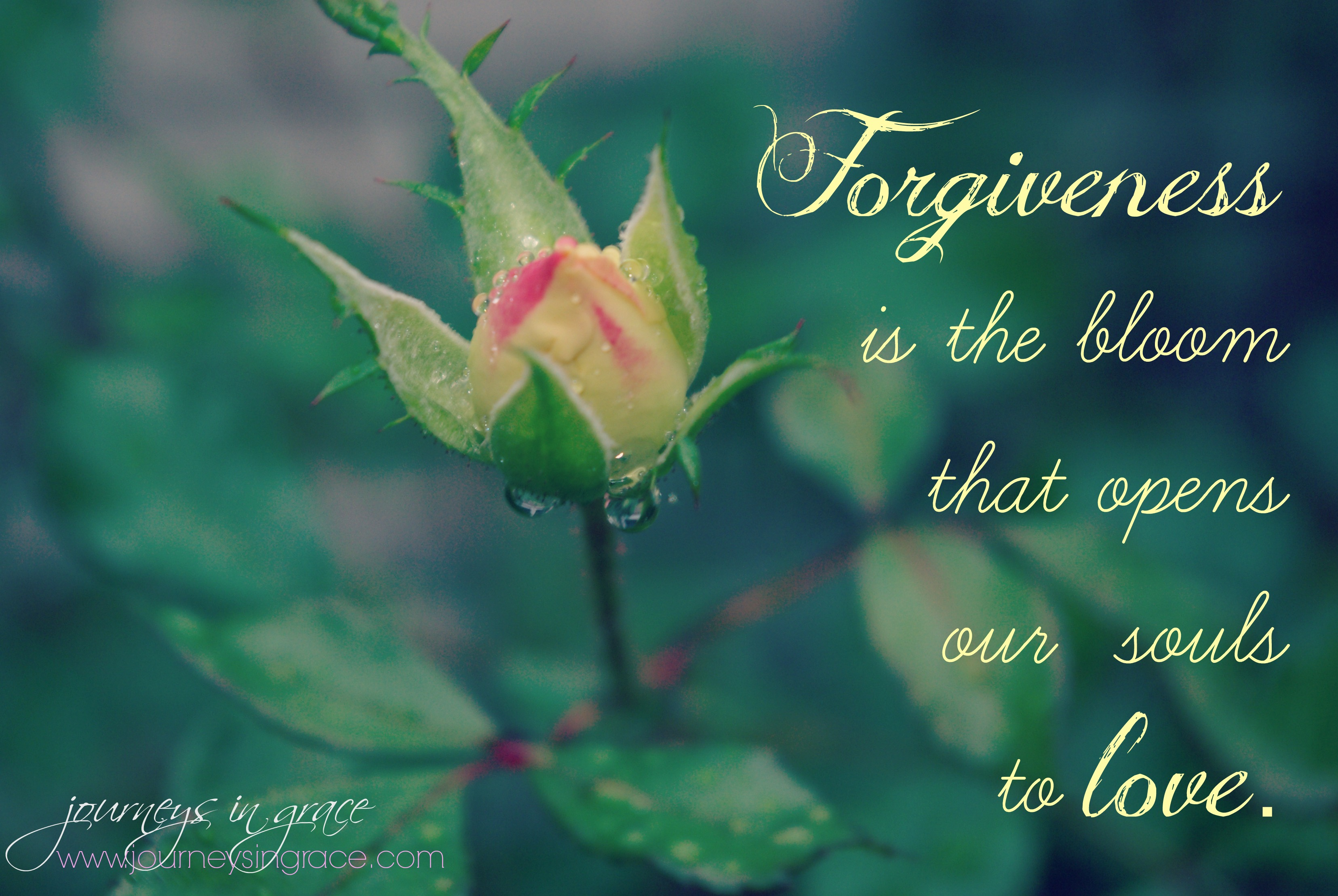 Bible Grace And Peace To You Forgiveness