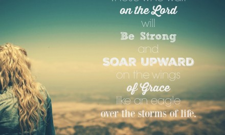Soaring on the Wings of Grace { A Post for Purposeful and Meaningful}
