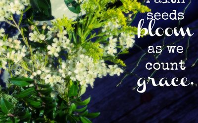 Counting Faith Seeds and blooming Grace ~#GraceMoments Link Up