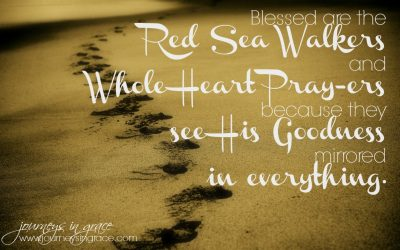 Red Sea Walking – Psalm 119 Bible Study