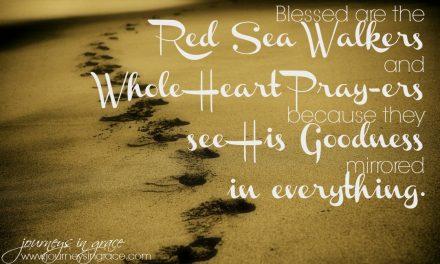 Red Sea Walking – Psalm 119 Bible Study