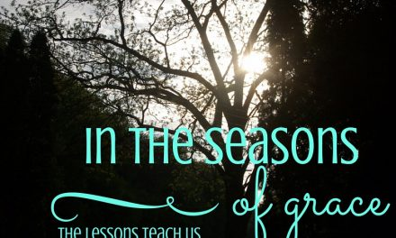 Seasons of Grace – #GraceMoments Link Up