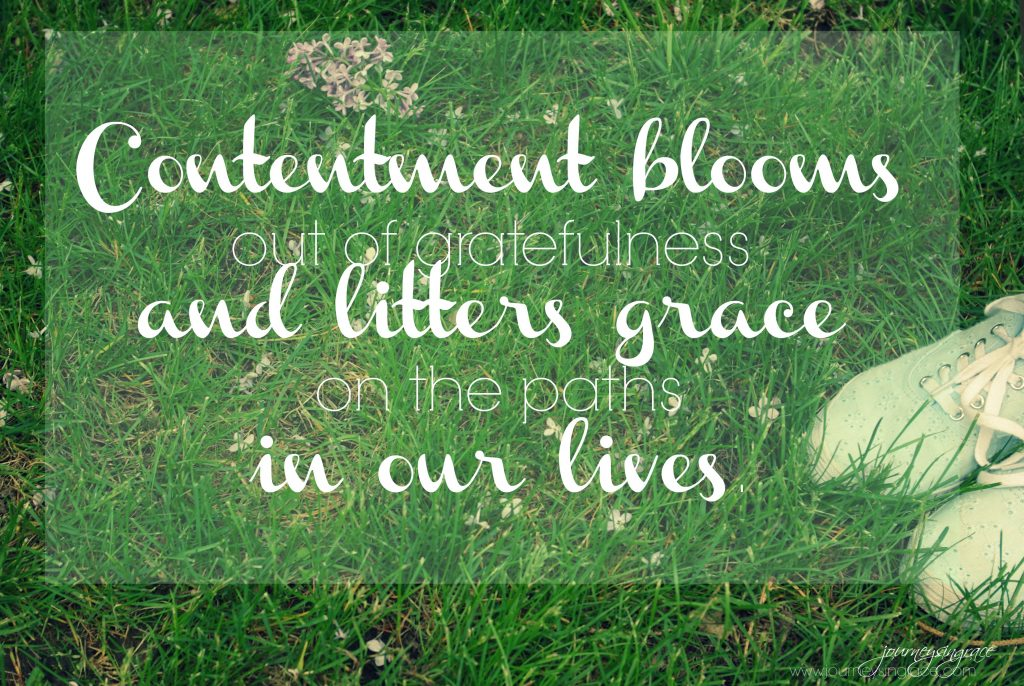 contentment blooms in grace