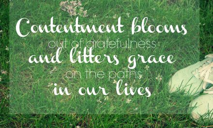 Contentment blooms in paths of grace – #GraceMoments Link Up