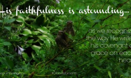 Lessons in Faithfulness – #GraceMoments Link Up