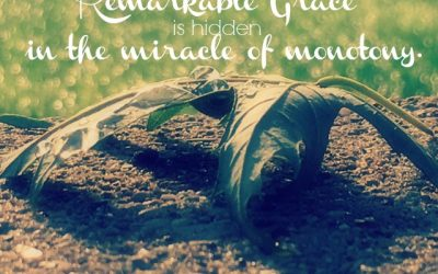 The Remarkable Nature of Grace – #GraceMoments Link up