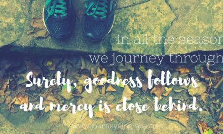 When goodness follows us in the seasons…#GraceMoments Link Up