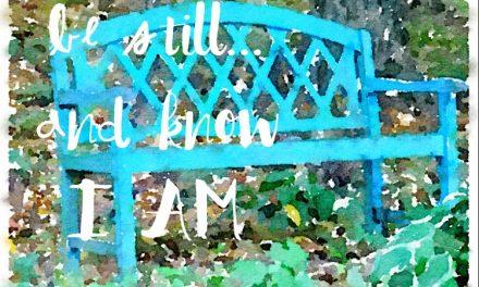 When choosing stillness wins…#GraceMoments Link Up