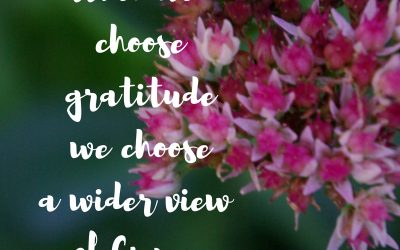 When choosing gratitude is choosing grace…#GraceMoments Link Up