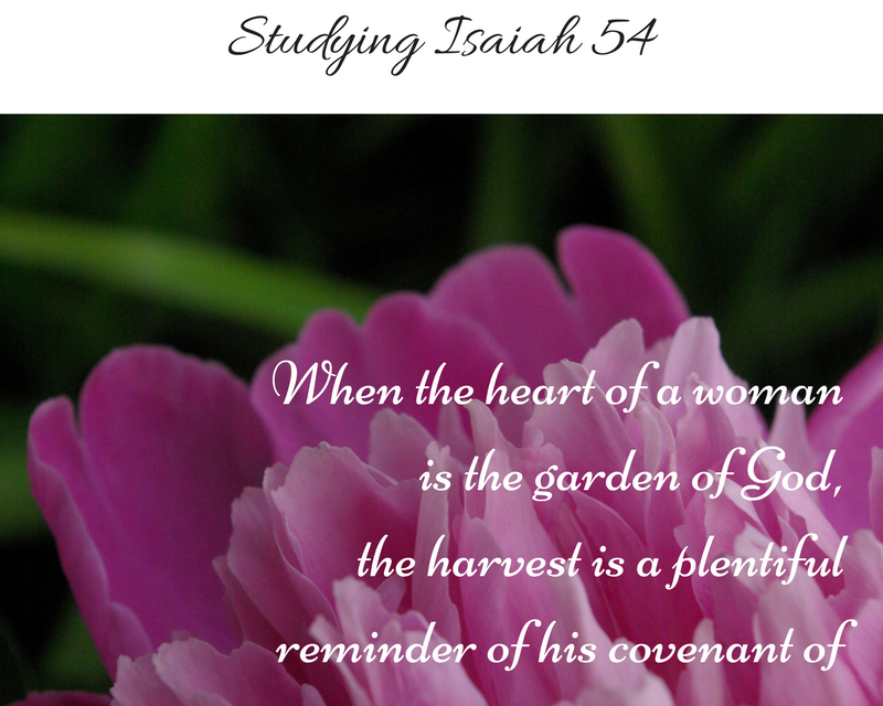 God's Covenant of Redemption… Studying Isaiah 54