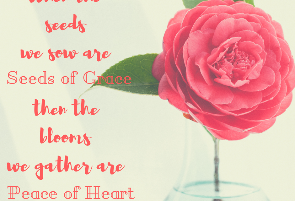 When Grace Seeds bring Heart Peace…#GraceMoments Link Up