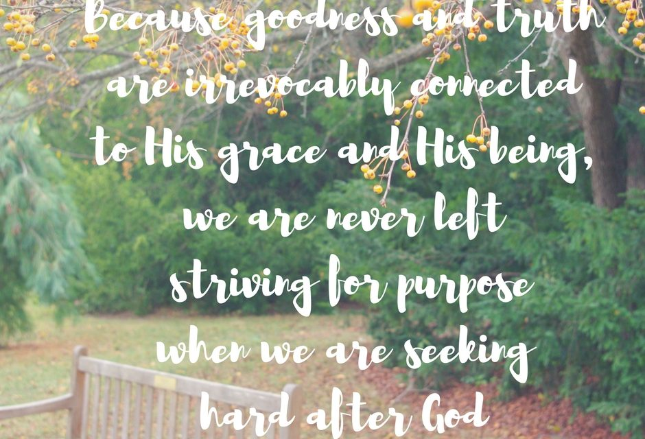 When we strive for goodness, truth and grace…#GraceMoments Link Up