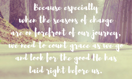 When we walk through seasons of grace…#GraceMoments Link Up.