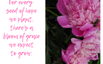 When grace blooms in our lives…#GraceMoments Link Up